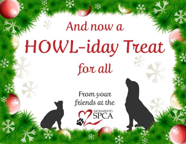 Happy Howl-idays from the Sacramento SPCA!