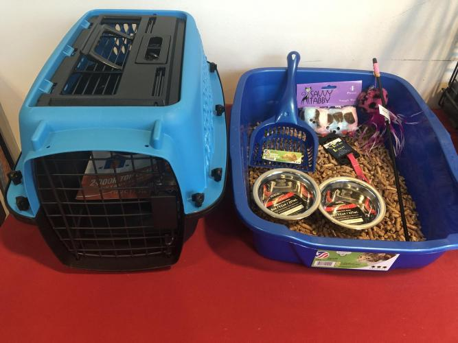 Cat carrier, litter box, food bowls, and toys