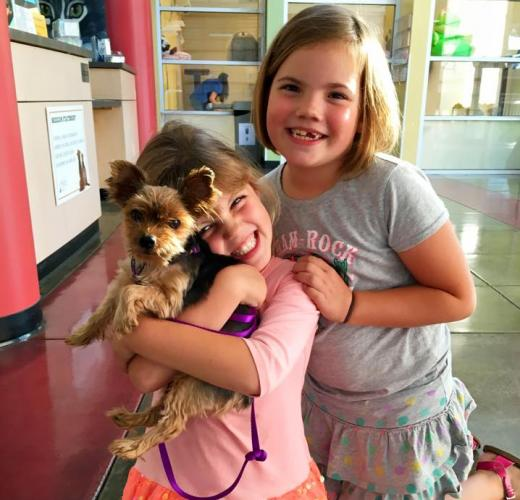 Little Girls holding a dog