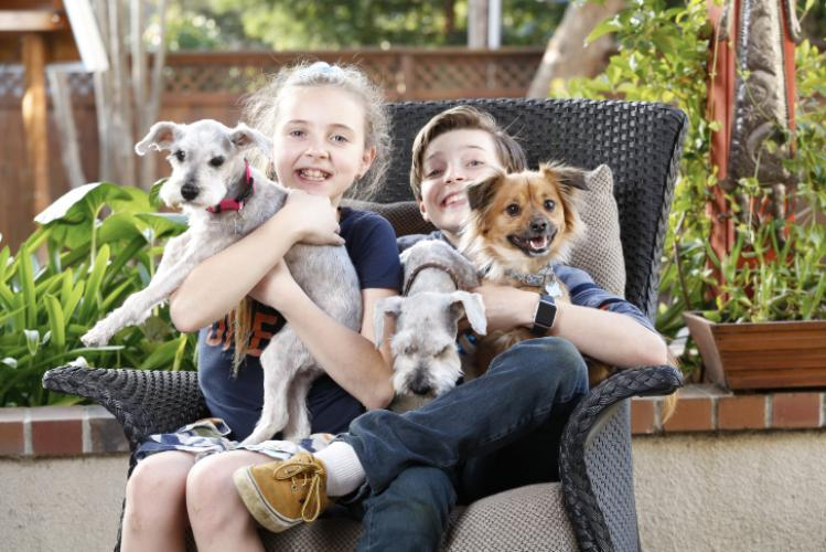 Young Kids holding dogs