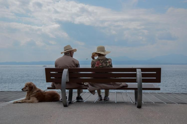 Senior Couple sitting on bench with dog